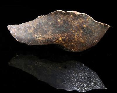 meteorite NWA 4488 (north-west Afrika)